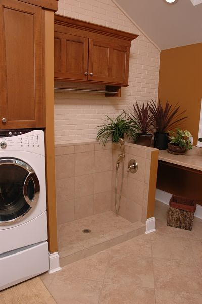 laundry room with pet washing station