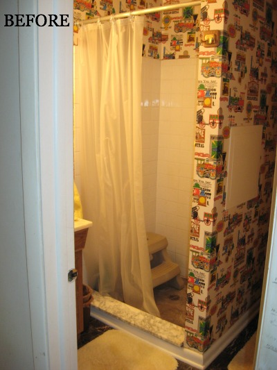 BEFORE shower stall